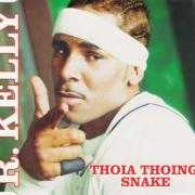 Coverafbeelding R. Kelly - Thoia Thoing/ Snake