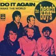 Coverafbeelding The Beach Boys - Do It Again