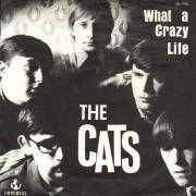 Coverafbeelding The Cats - What A Crazy Life