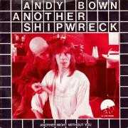 Coverafbeelding Andy Bown - Another Shipwreck