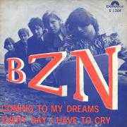 Coverafbeelding BZN - Every Day I Have To Cry