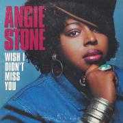 Coverafbeelding Angie Stone - Wish I Didn't Miss You