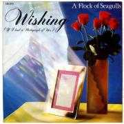 Coverafbeelding A Flock Of Seagulls - Wishing (If I Had A Photograph Of You)