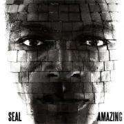 Coverafbeelding Seal - Amazing