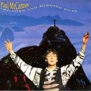 Coverafbeelding Paul McCartney - The Long And Winding Road