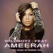 Coverafbeelding Wildboyz feat. Ameerah - The sound of missing you