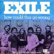 Coverafbeelding Exile - How Could This Go Wrong