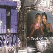 Coverafbeelding T-Spoon - A Part Of My Life
