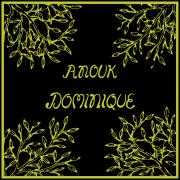 Coverafbeelding Anouk - Dominique