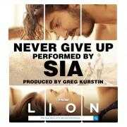 Coverafbeelding Sia - Never give up