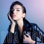 Coverafbeelding Dua Lipa feat. Miguel - Lost in your light