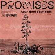 Coverafbeelding Calvin Harris & Sam Smith - Promises