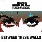 Coverafbeelding Junkie XL featuring Anouk - Between These Walls