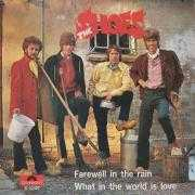 Details The Shoes - Farewell In The Rain