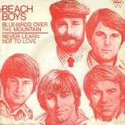 Coverafbeelding The Beach Boys - Bluebirds Over The Mountain