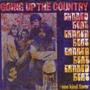 Coverafbeelding Canned Heat - Going Up The Country
