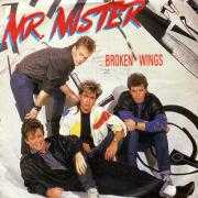 Details Mr. Mister - Broken Wings