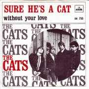 Coverafbeelding The Cats - Sure He's A Cat