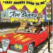 Coverafbeelding Jive Bunny and The Mastermixers - That Sounds Good To Me