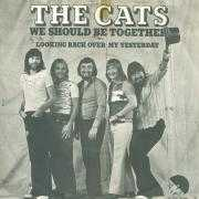 Coverafbeelding The Cats - We Should Be Together