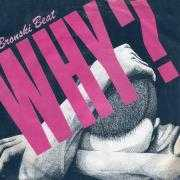 Details Bronski Beat - Why?