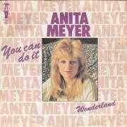 Coverafbeelding Anita Meyer - You Can Do It