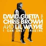 Coverafbeelding David Guetta feat. Chris Brown and Lil Wayne - I Can Only Imagine