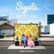 Details Sigala & Becky Hill - Wish You Well