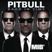 Coverafbeelding pitbull - back in time