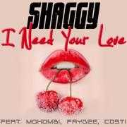 Coverafbeelding Shaggy feat. Mohombi, Faydee, Costi - I need your love