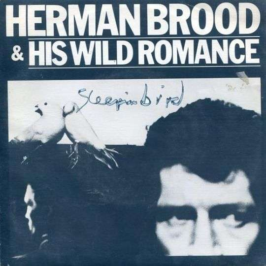 Coverafbeelding Sleepin Bird - Herman Brood & His Wild Romance
