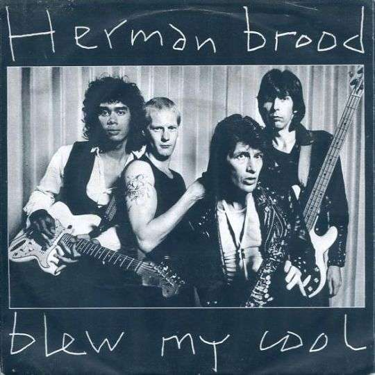 Coverafbeelding Blew My Cool - Herman Brood