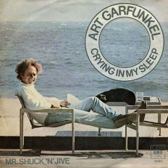 Coverafbeelding Crying In My Sleep - Art Garfunkel