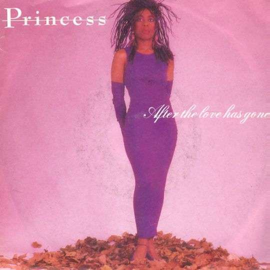 Coverafbeelding Princess - After The Love Has Gone