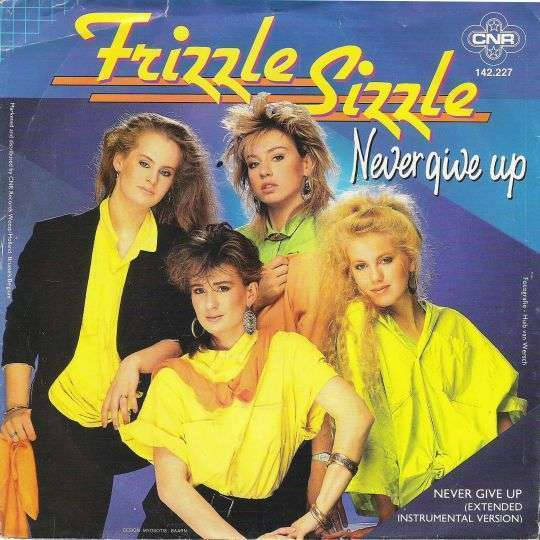 Coverafbeelding Never Give Up - Frizzle Sizzle