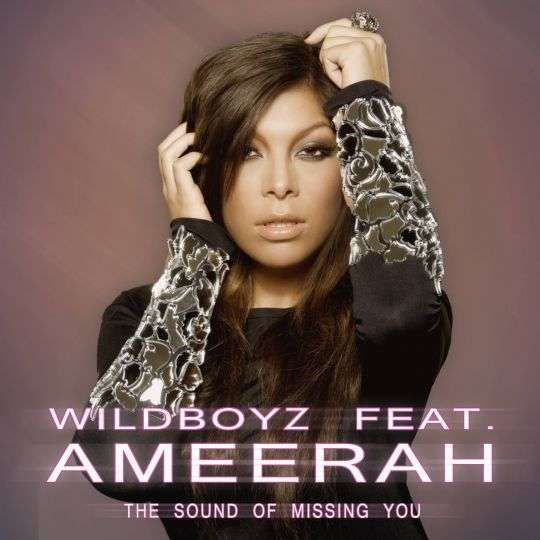 Coverafbeelding The Sound Of Missing You - Wildboyz Feat. Ameerah