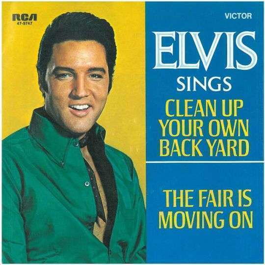 Coverafbeelding Clean Up Your Own Back Yard - Elvis