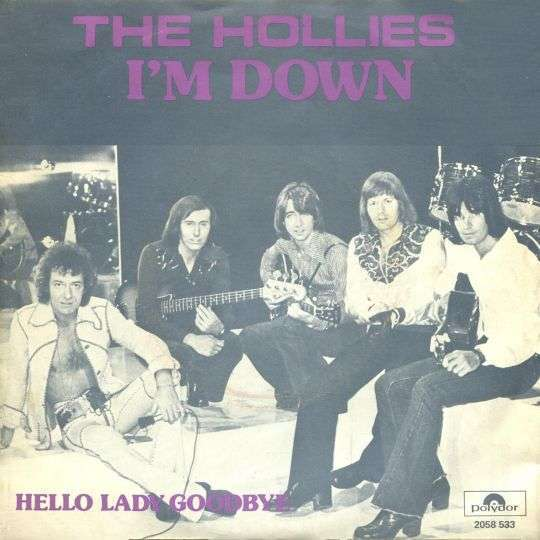 Coverafbeelding I'm Down - The Hollies