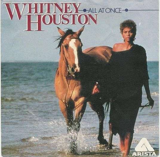 Coverafbeelding All At Once - Whitney Houston