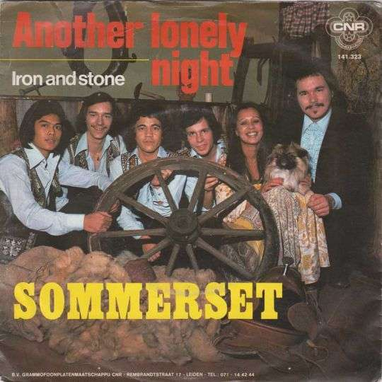 Coverafbeelding Another Lonely Night - Sommerset