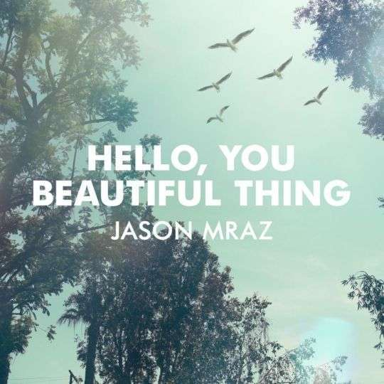 Coverafbeelding Hello, You Beautiful Thing - Jason Mraz