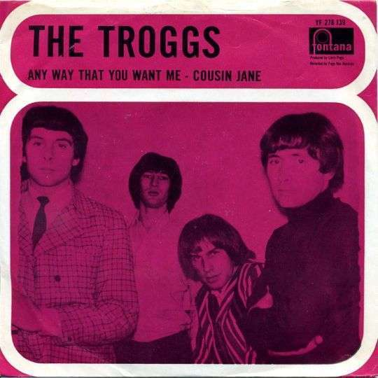 Coverafbeelding Any Way That You Want Me - The Troggs