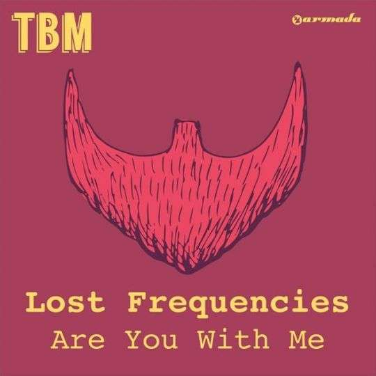 Coverafbeelding Are You With Me - Lost Frequencies