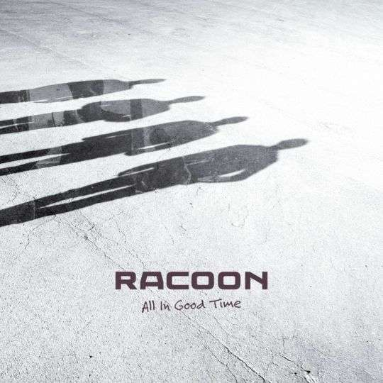 Coverafbeelding Fun We Had - Racoon