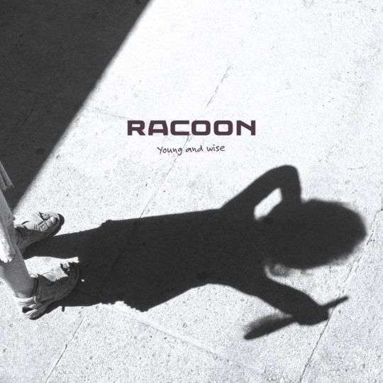 Coverafbeelding Young And Wise - Racoon