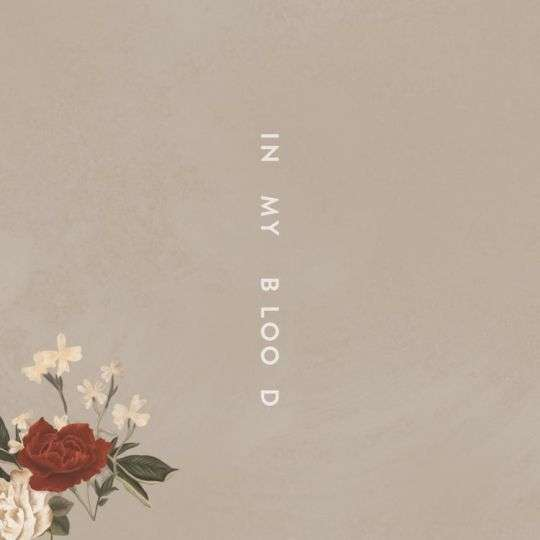 Coverafbeelding In My Blood - Shawn Mendes