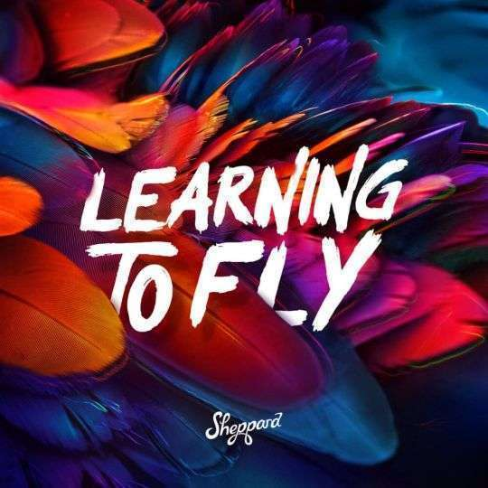 Coverafbeelding Sheppard - Learning To Fly