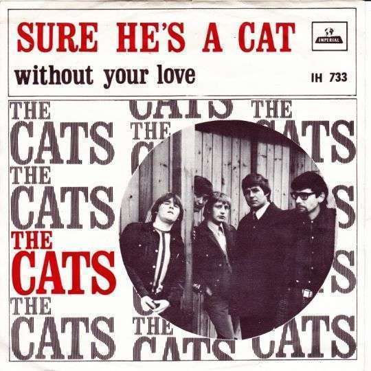 Coverafbeelding Sure He's A Cat - The Cats