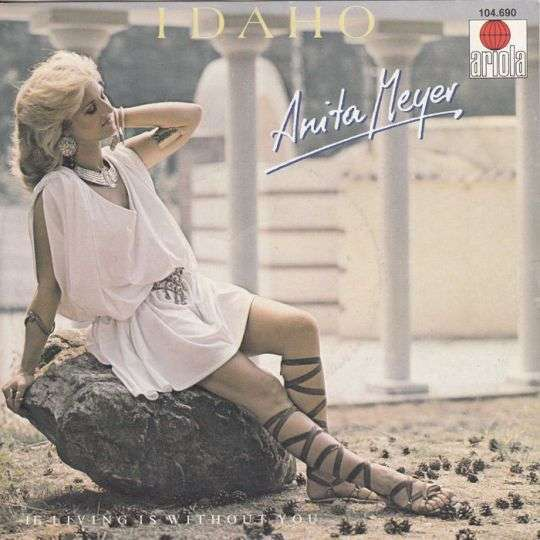 Coverafbeelding Idaho - Anita Meyer