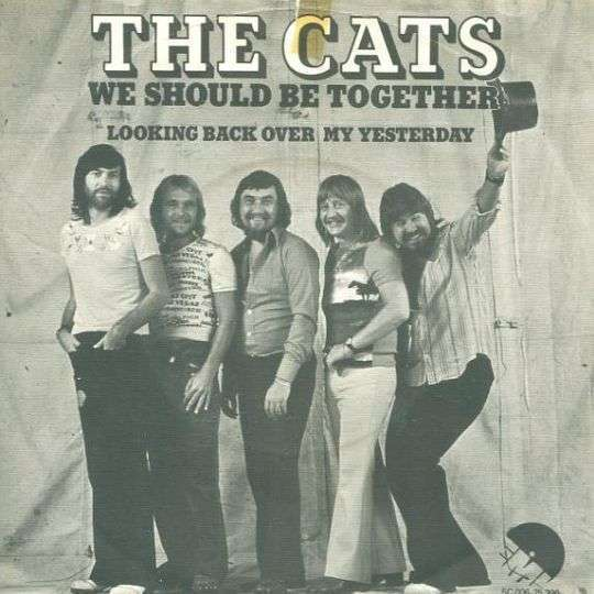 Coverafbeelding We Should Be Together - The Cats